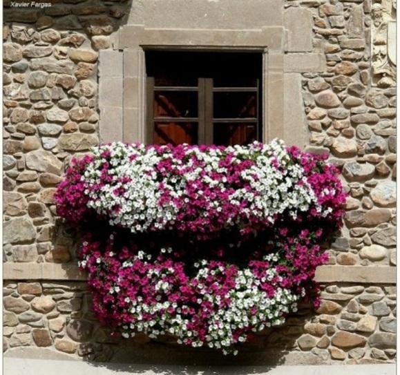 balkon pflanzen design garten gestalten holz lila weiß blüten