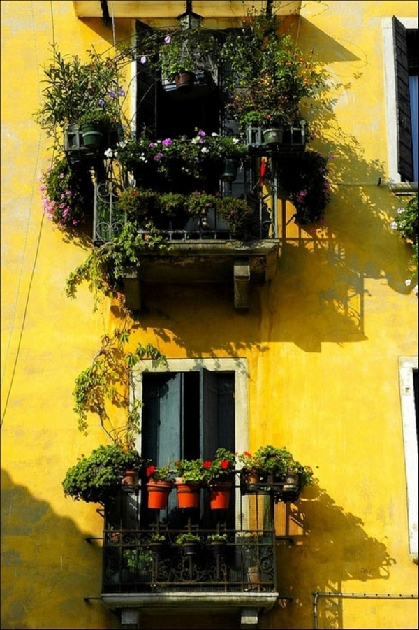 balkon pflanzen design garten gestalten holz topf blumen