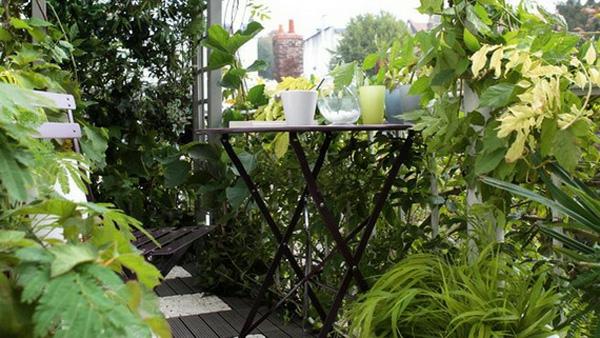 bequeme balkon designs ideen kleingarten grün