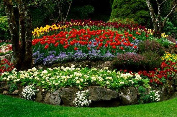 coole gartengestaltung blumenbeete anlegen garten tulpen