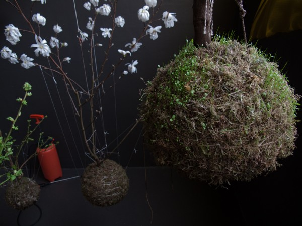 coole gartengestaltung fedor van der valks hängend blumen pflanzen