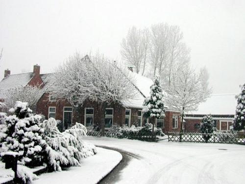 coole gartengestaltung tipps haus winter schnee