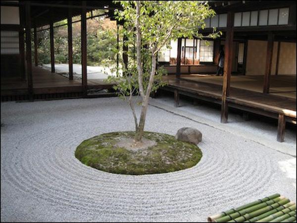 der japanische garten kreis steine baum