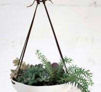 Der vertikale Garten – eine prachtvolle grüne Dekoration für das Haus