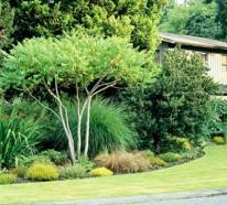 Kluge Ideen, wie man den engen Raum im Garten gestalten kann