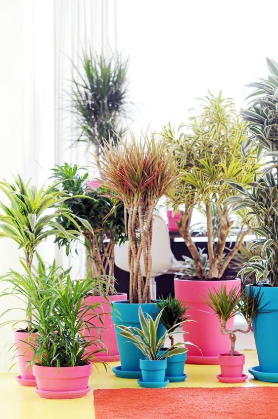 frühlingsdeko ideen esszimmer einrichtung zimmerpflanze bunt