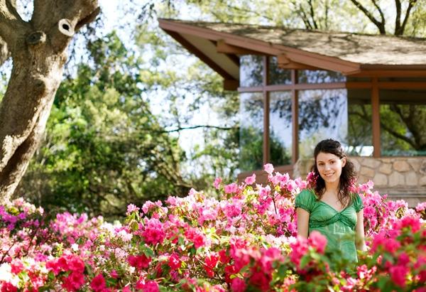 frühlingsstimmung im garten rosa blüten holz häuschen