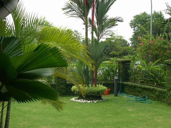 Garten design ideen coole und originelle ideen f r gartengestaltung - Gartengestaltung vorschlage ...