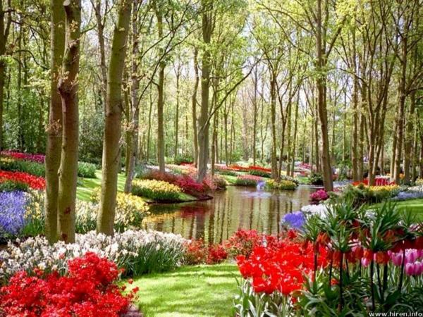 7 Garten Gestaltung Tipps für Anfänger - angenehm und praktisch