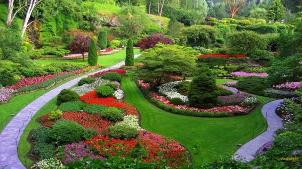 garten gestaltung tipps bunt pflanzen blüten