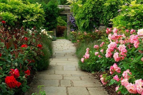 garten verschönern weg rosen