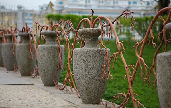 Gartenzaun und gartengrenzen ideen   nützliche designer vorschläge