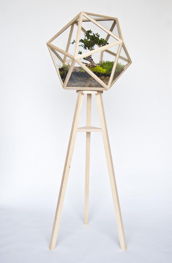 designer idee gartengestaltung terrarium bonsai baum originell alt