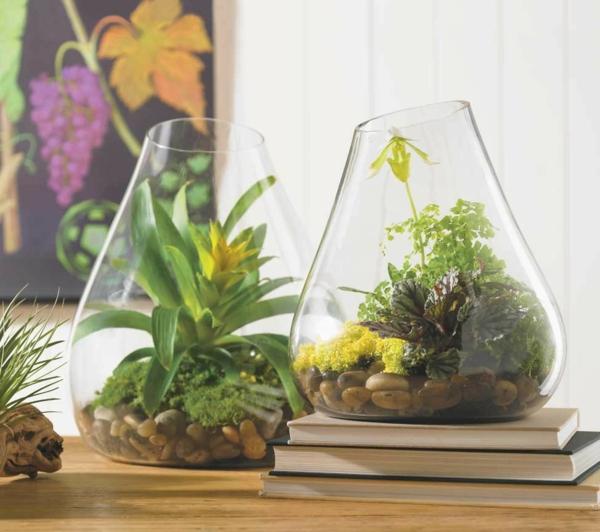 designer idee gartengestaltung terrarium bonsai baum originell steine pflanze