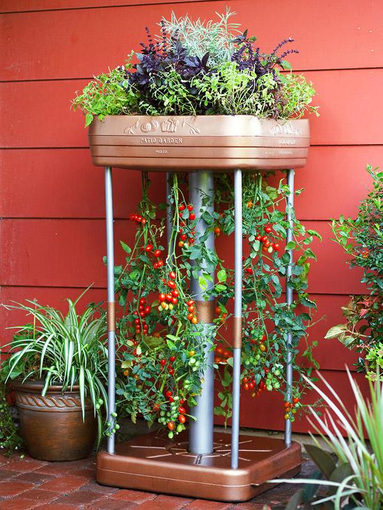 gemüse anbau in containern blau keramisch dekorativ