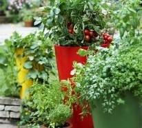 20 interessante, frische Ideen für Gemüse Anbau in Containern