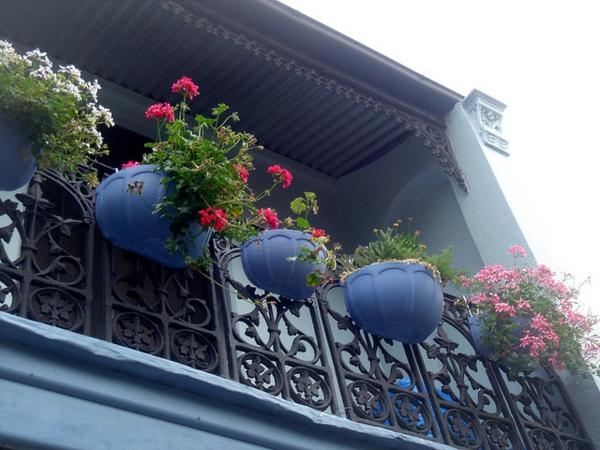 hängenden garten auf balkon gestalten kleingarten coole ideen