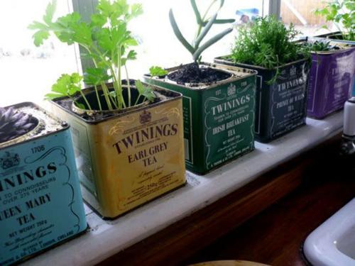 Schön Herrliche Feng Shui Küche Kräutergarten Idee Tee