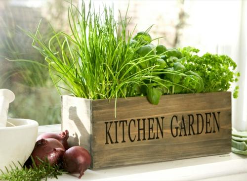 herrliche feng shui küche kräutergarten idee