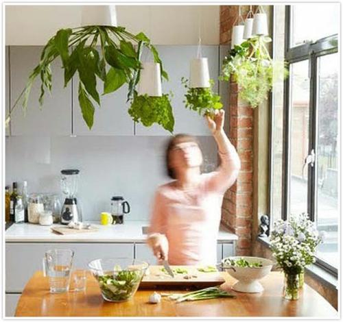 herrliche feng shui küche kräutergarten natur haus bringen