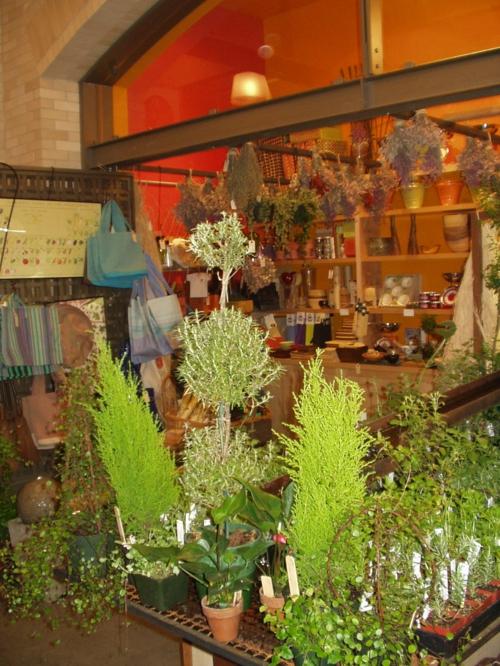herrliche feng shui küche kräutergarten pflanzen