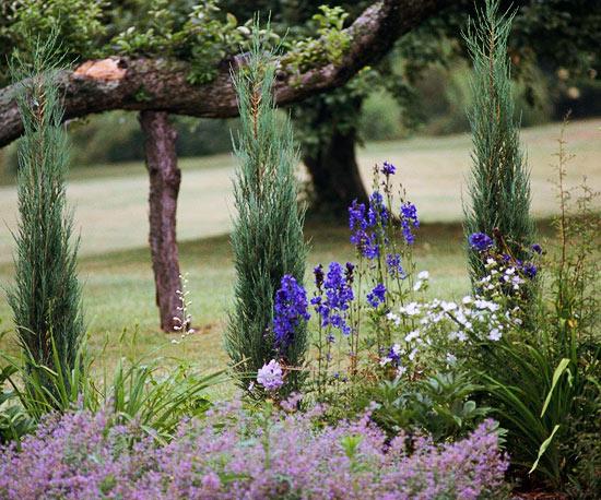 leichte landschaft ideen regeln  befolgen lila blüten
