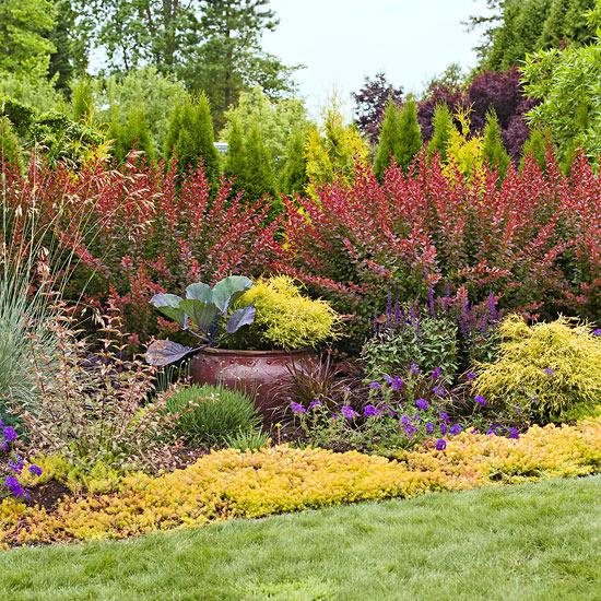 leichte landschaft ideen regeln befolgen pflanzenarten