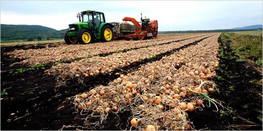 perfekter erdboden bearbeitung traktor fruchtbar