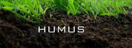 perfekter erdboden humus gras fruchtbar