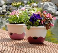 Blumen und Pflanzen für den Balkon – herrliche, frische Atmosphäre schaffen