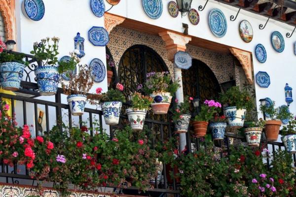 pflanzen für den balkon hängen rosa wandteller