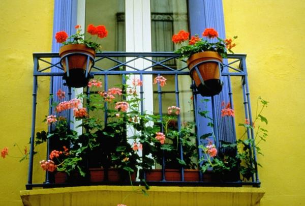 praktische balkon ideen bunt topf gelb mauer kompakt