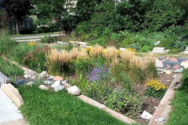 regen garten pflanzen nass grün gras steine