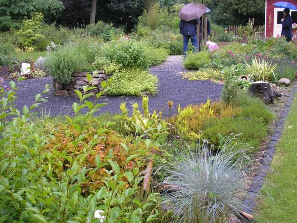regen garten pflanzen nass grün gras