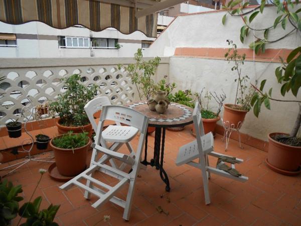 schön dekoration balkon pflanzen