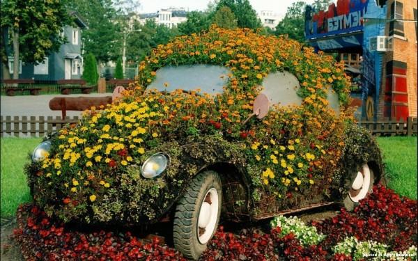 coole pflanzen und gartenkunst ideen alt auto