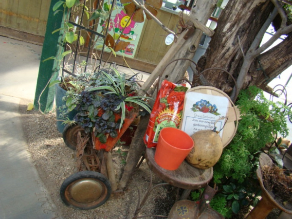 coole pflanzen und gartenkunst  ideen baum flohmarkt