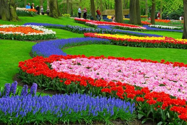 coole pflanzen und gartenkunst ideen baum herrlich
