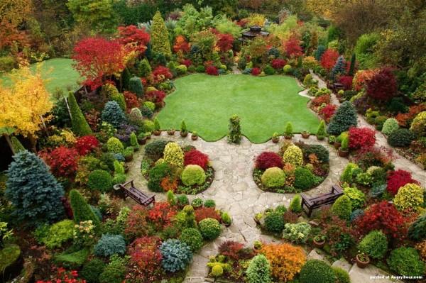 coole pflanzen und gartenkunst  ideen baum pracht