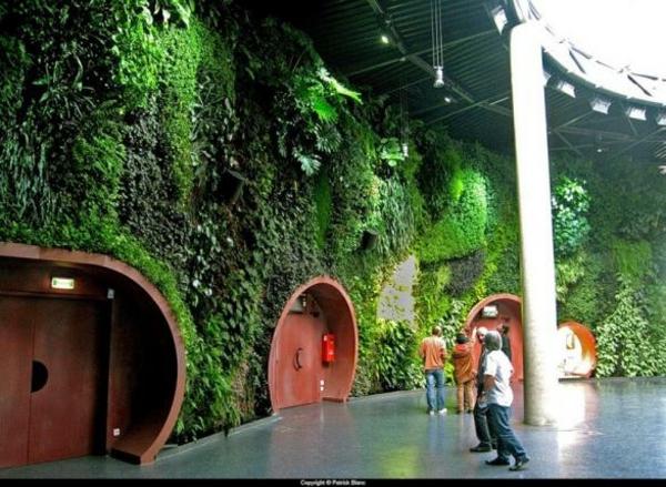 coole pflanzen und gartenkunst  ideen baum vertikal