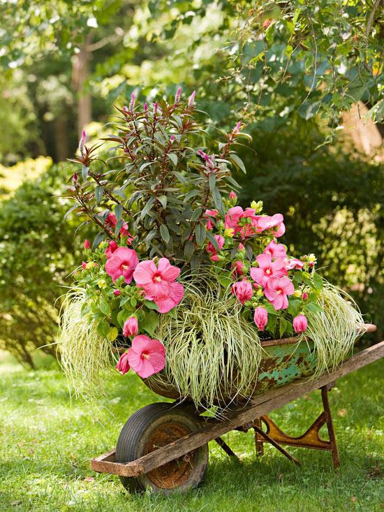 skurrile landschaft design  ideen blüten rosa