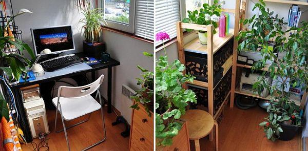 terrasse balkon winzig kompakt idee arbeitsplatz schreibtisch pflanzen