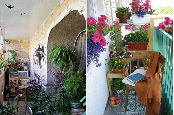 terrasse balkon winzig kompakt idee pflanzen käfig