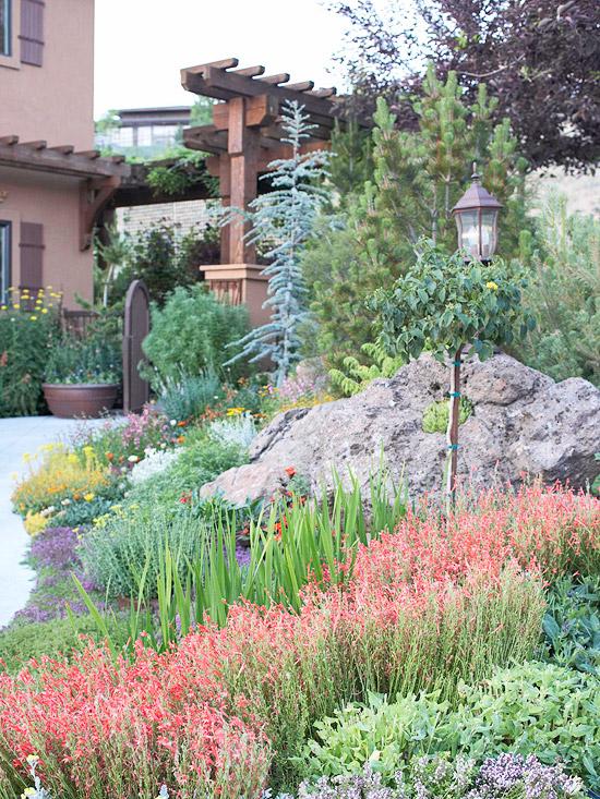 Trockenheitsvertr Gliche Pflanzen Wundersch Ne Garten Ideen
