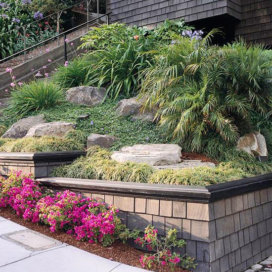 trockenheitsverträgliche pflanzen ecke busch