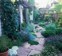 Trockenheitsverträgliche Pflanzen – wunderschöne Garten Ideen