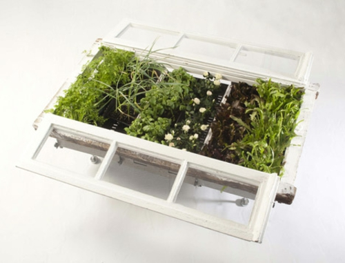 Recycelte Möbel als Pflanzen Behälter verwendet holz glas fenster