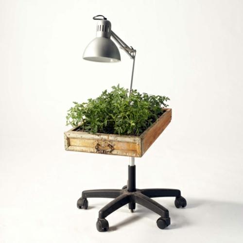 Recycelte Möbel alsPflanzen Behälter verwendet holz rollen lampe