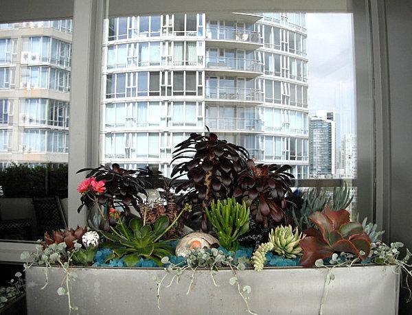 coole balkon deko ideen blumen pflanzen behälter