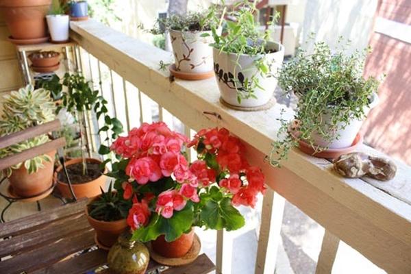 coole balkon deko ideen blumen pflanzen geländer